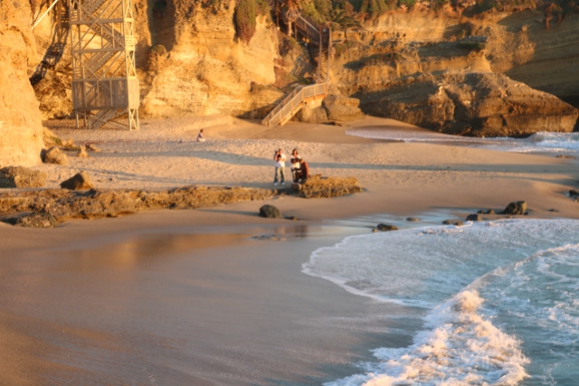 I can't make this stuff up! This couple brought their two cats right onto the sand!
